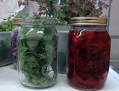 Herbs & Fruit