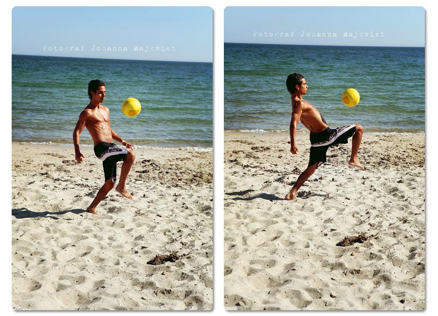 2 bilder2