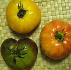 Tomatos cool (Julia Manzerova) Tags: tomato three tres tomatos tre drei shalosh heirloomtomatos tlata