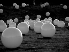 Mi chiamo Mork..... (Stranju) Tags: bw roma bn palle pallette circomassimo giancarloneri chepalle biacoenero nottebianca2007 sfidephotoamatori sfidephotoamatoriwinner canoniani massimosilenzio maperfarepiudi50visitedevomettereperforzadeiculi