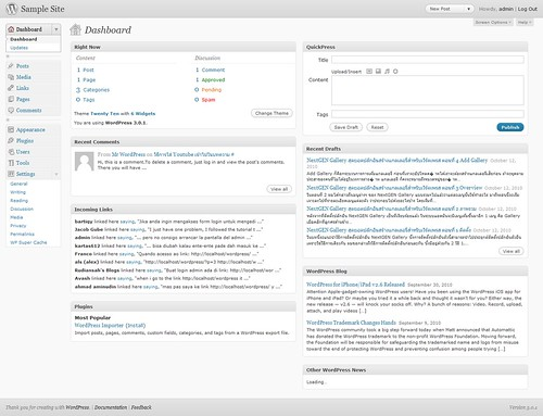 wordpress-dashboard-01