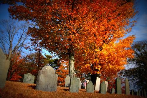 Graveyard 3 Lomo-Ish