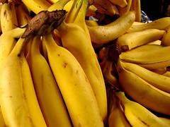 Plátanos (Yolo Axolotl) Tags: food yellow fruit méxico mexico comida tasty banana fresh fruta delicious amarillo hungry fresco delicia hambre plátanos sabor mejico yoloaxolotl