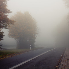 Brunsbecke (jpk.) Tags: street november autumn fall leaves fog nebel laub herbst autobahn unterwegs schild autos a45 reise 2010 mittelstreifen bundesautobahn schlechtesicht canoneos7d janphilipkopka ef235mm