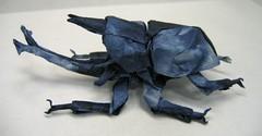 Samurai Helmet Beetle (PhillipWest) Tags: origami paperfolding papiroflexia