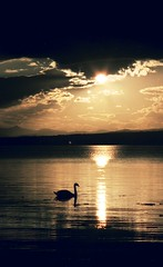 Posta de sol / Sunset (visol) Tags: sunset holiday clouds atardecer scotland vacances escocia nubes vacaciones breathtaking inverness núvols naturesfinest capvespre 5photosaday abigfave impressedbeauty aplusphoto excellentphotographerawards theunforgettablepictures escàner