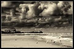 (andrewlee1967) Tags: blackpool pier rollercoaster bigone sea beach gulls sky clouds blackandwhite canon400d andrewlee1967 uk landscape lancashire seaside mono bw monochrome focusman5 andrewlee england mywinners