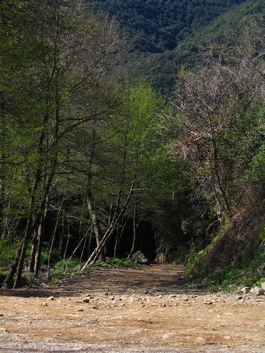 Camins que s'endinsen muntanya amunt