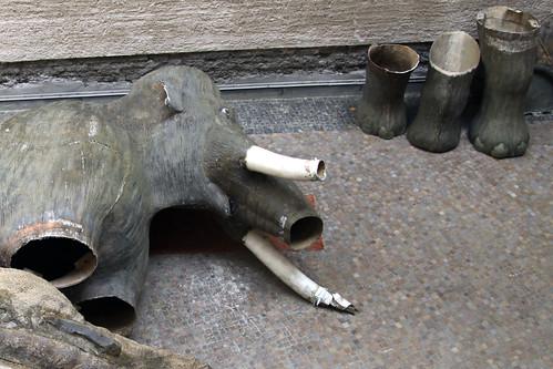 Mammutfüße