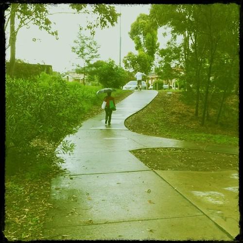 Path in the Rain