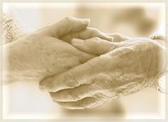 Parler d'Amour...... (.Sophie C.) Tags: love explore amour mains touchinghands mainsserres