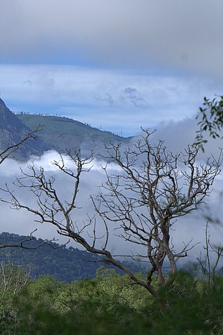 Bandipur Scenery with Monsoon Clouds