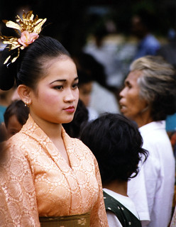 1998 Lombok Bridesmaid: 1998 Lombok Bridesmaid