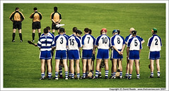 Waterford Hurling (C) July 2007