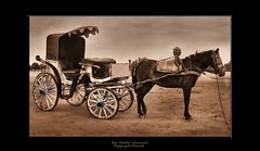 Old carriage - by khalid almasoud