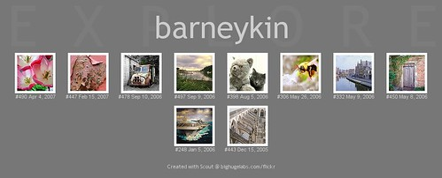 The Barneykin 10