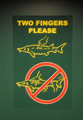 Instructions set forth to not startle the fish