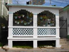 Houses in Dorado Puerto Rico (raniel1963) Tags: houses del puertorico isla encanto dorado isladelencanto portorico borinquen raniel1963raniel1963raniel1963