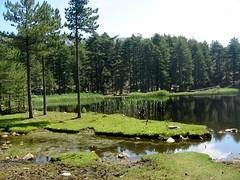 Lac de Crenu (2006)