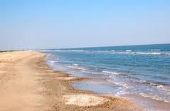 Gulf of Mexico, Holly Beach, LA. (jc.winkler) Tags: shells louisiana alligators shrimpboats shorebirds hollybeach