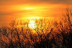 Sunset Scharbeutz / Germany