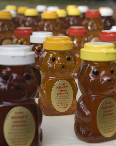 March Of The Honey Bear Soldiers