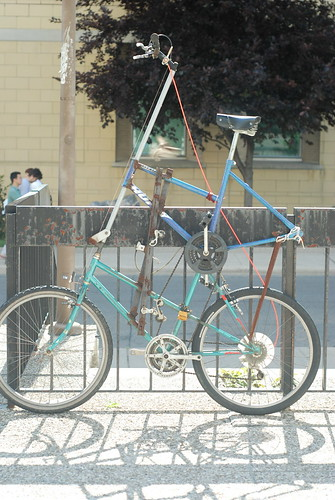 Home Grown Tall Bike