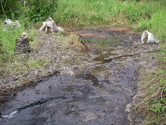 Oil spill in the Amazon rainforest, 400 barrels released into the Marañón river