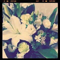 お花をいただいた