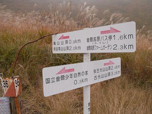 ススキ@曽爾高原-08