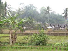 View on the village (Gunther Moons) Tags: indonesia java asia village 2006 indonesia2006 java2006 kampungnaga