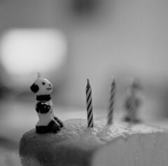 (*Bang Bang Boy*) Tags: cake 35mm nikon candles dof depthoffield birthdaycake ilfordxp2 fm3a c41bw