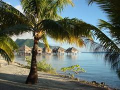 (Motu Tape - Le Meridien Bora Bora) (scalleja) Tags: sergio french polynesia honeymoon luna miel bora 2007 meridien francesa polinesia keko calleja freixes scalleja