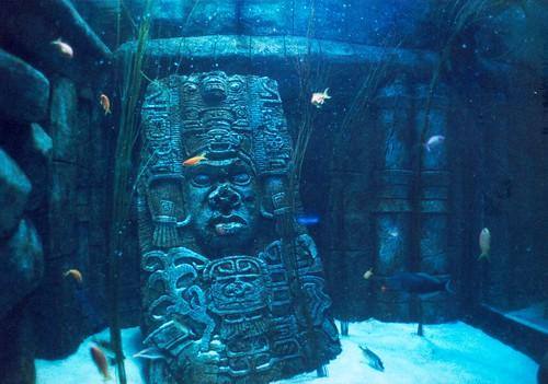 Ancient sunken mysteries - Sea Life #10
