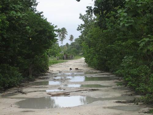 The main road Niuatoputapu
