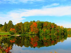 Hwy 118 Enroute to Dorset, ON (Snuffy) Tags: autumn ontario canada reflection fall seasons greatshot potofgold straightfromcamera instantfave 5photosaday neverbeenthere unature cans2s wowiekazowie ontarioprovincialparks excapture worldtrekker ilovemypics qualitypixels