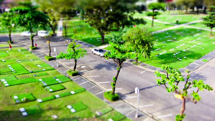 Cemetery2010-027
