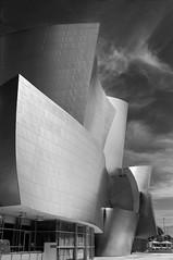 Los Angeles (annedonnay) Tags: usa architecture la hall blackwhite losangeles concert frankgehry californie noirblanc nbl dysney disneyconerthall concordians