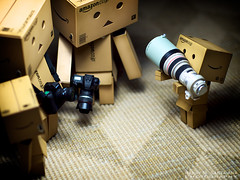 116/365:  Can We Use The Big One Now? (Randy Santa-Ana) Tags: canon toys nikon danbo nikonf5 danboard 365daysofdanbo 16scalecamera