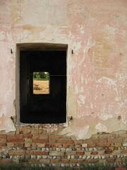 concentric grain (Nicola Zuliani) Tags: 3 nicola country finestra campagna tre casolare treviso grano finestre cascina mattoni nizu zuliani dosson casolareabbandonato nicolazuliani nizuit wwwnizuit