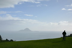 Whale Island from Kohi Lookout