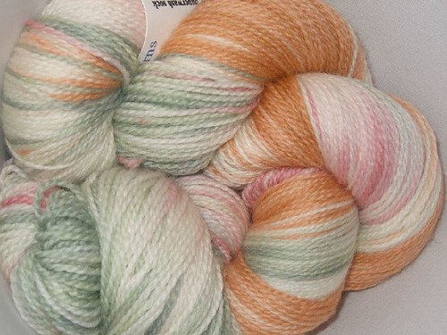 Seacoast Superwash Sock (8)