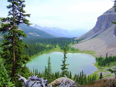Tower Lake - A Small Tarn (altamons) Tags: mountain canada mountains castle nationalpark interestingness interesting searchthebest hiking scout canadian hike explore national alberta banff mountainview geology tarn coolest scramble banffnationalpark castlemountain scrambling canadianrockies blueribbonwinner geoscience supershot scouted explored altamons anawesomeshot impressedbeauty superbmasterpiece diamondclassphotographer