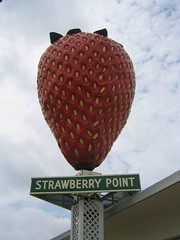 World's Largest Strawberry on a Stick