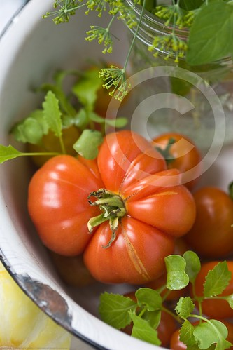 Organic Garden Tomatoes: all our own!