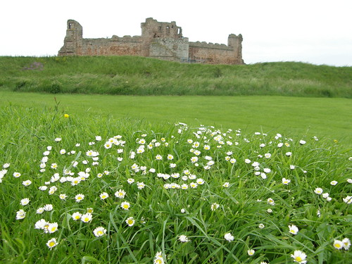 Tantallon with flowers