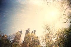 01030029 (Tara Holland) Tags: newyork film analog centralpark slidefilm lookingup lensflare essexhouse 010300293