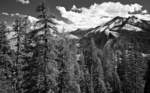 Vista from Half Dome Trail (B&W)