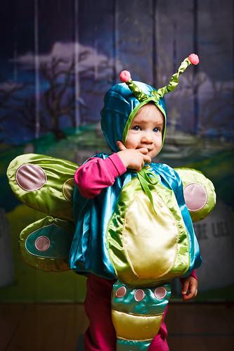 Ella the Dragonfly