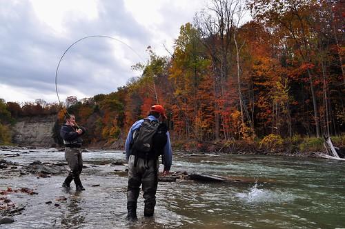 Nate battles a steelhead against a backdrop of fall leaves